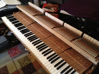 "The ""action"" of my piano."