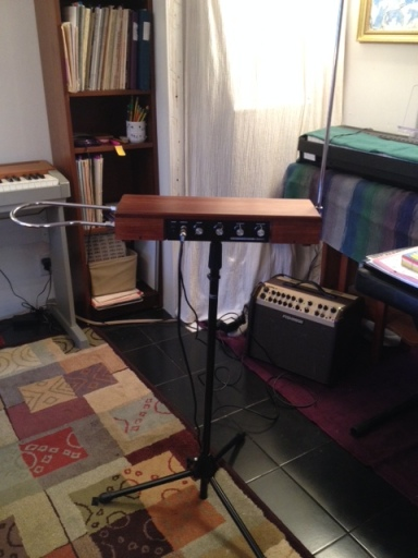Etherwave theremin set up and ready to play!